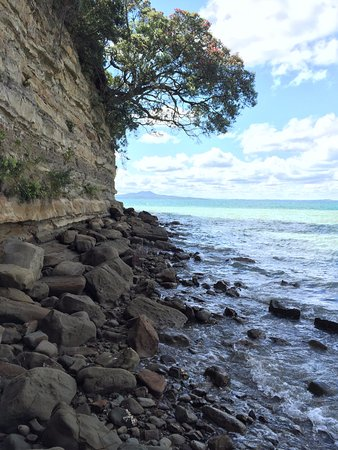 Browns Bay, New Zealand: Waiake bay