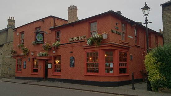The Hopbine