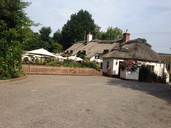 Sunny Times - Picture of Farmers Arms at Combe Florey