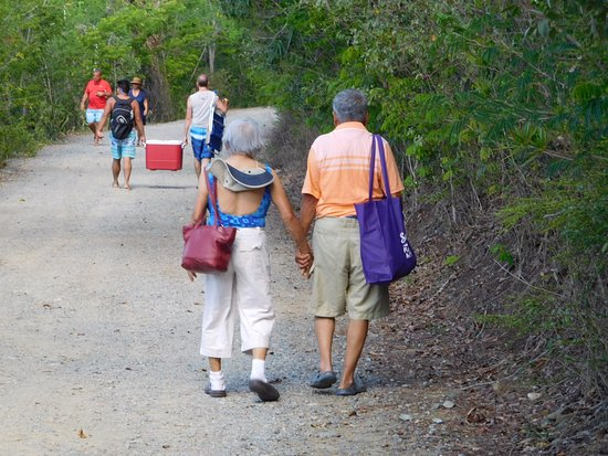 Virgin Island Eco Tours - Honeymoon Beach Day Pass: Walking trail from Caneel Bay Resort Parking to beach