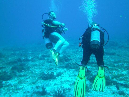 Liquid Blue Divers: Blowing bubbles!