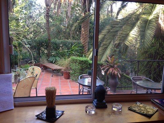 Posada del Bosque: Vista desde el desayunador