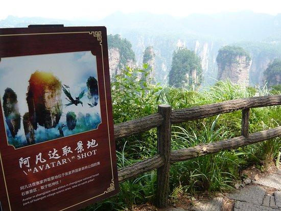 Vorlage für den Avatar Film - Bild von Chinarundreisen-Tagestouren ...