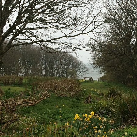 Woodwick House : View looking down to the water