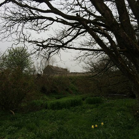 Woodwick House: view up the hill