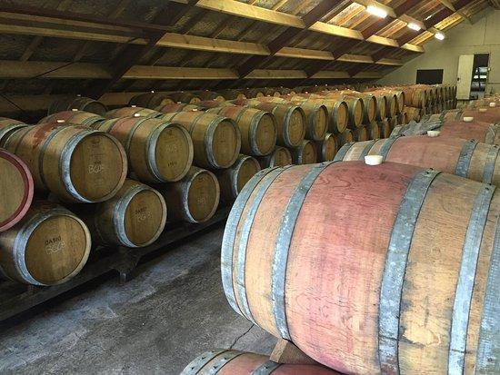 Katikati, Nowa Zelandia: Barrel Hall