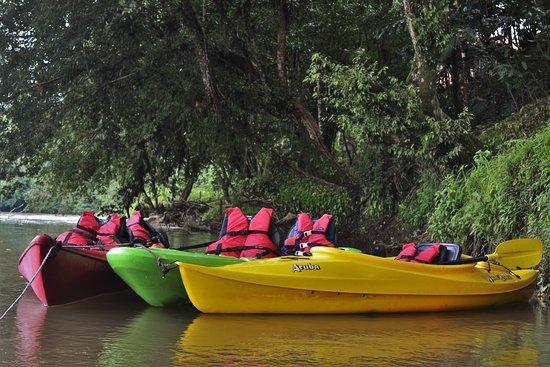 Pedacito de Cielo: Kayak