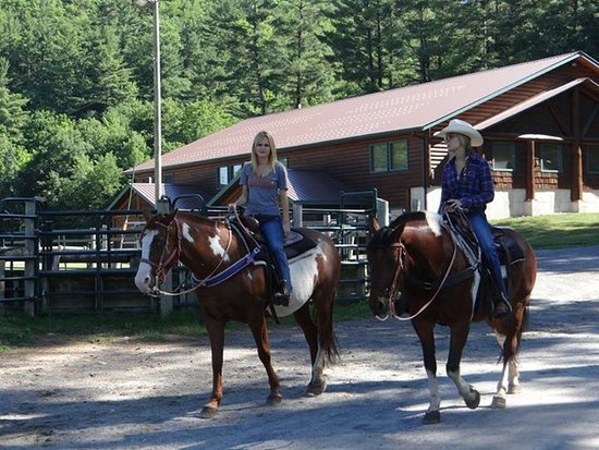 Ridin-Hy Ranch Resort: Riding