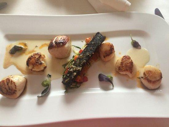 Roadford House Restaurant : Scallops