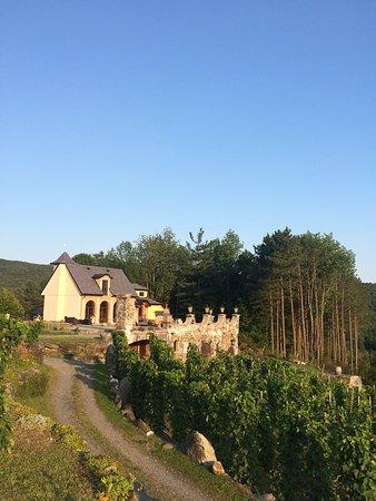 Chapelle Ste Agnes Vineyard: Fantastic place!!! 5 stars
