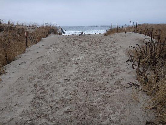Plum Island: One of many walkways to the beautiful beach.