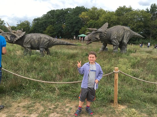 Almost Everything You Need To Know About Field Station Dinosaurs