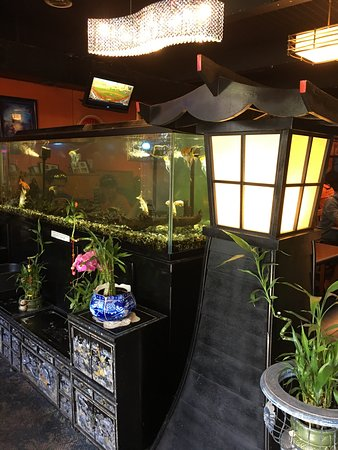 Tiffany's Bar & Grill: photo5.jpg
