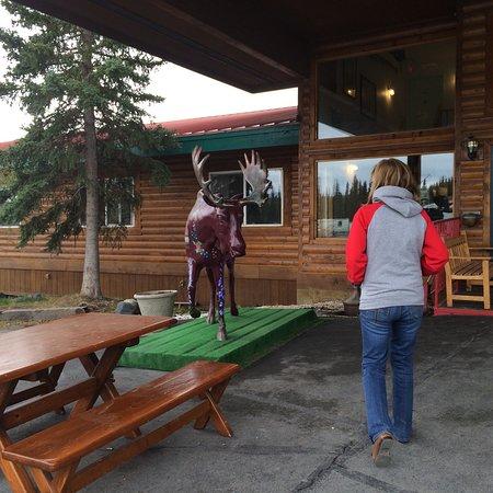 Glennallen, Αλάσκα: photo4.jpg