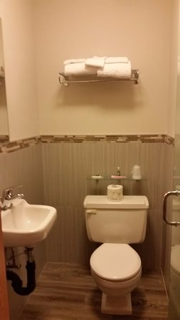 The Adventure Hotel : 207 bathroom. handle is from door into it. little more than the width of a door