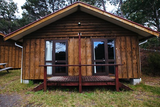 Opoutere Coastal Camping: Cabin 2 and 3
