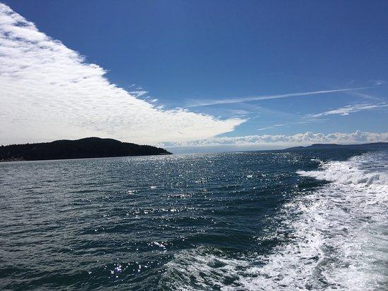 Island Adventures 사진