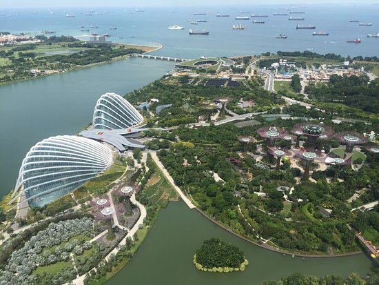 Garden By The Bay Bar as seen from marina bay sands roof bar - picture of gardensthe