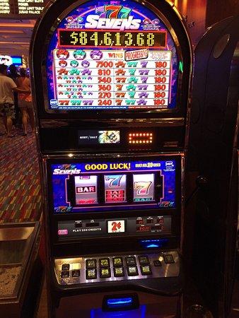 seminole hard rock casino tampa winners 2018 - 338×450