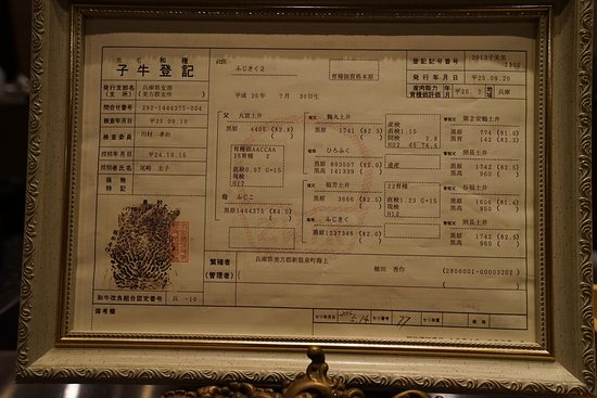 birth certificate of the cow 港区 石垣吉田の写真 トリップ