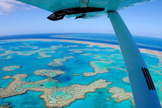 Martinique Whitsunday Resort : Hardy Lagoon at Hook Reef Whitsundays Australia