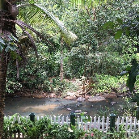 Kandy Guest House: photo3.jpg