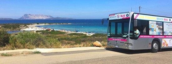 San Teodoro Beach Bus