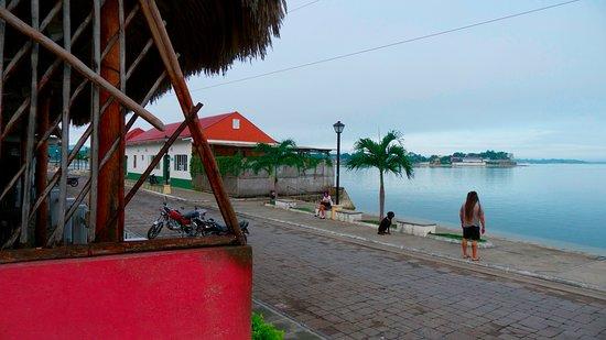 Hotel Casa Amelia: View from the Hotel Verandah