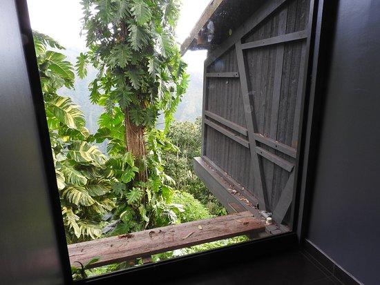 Le Belvedere: Vue des toilettes...