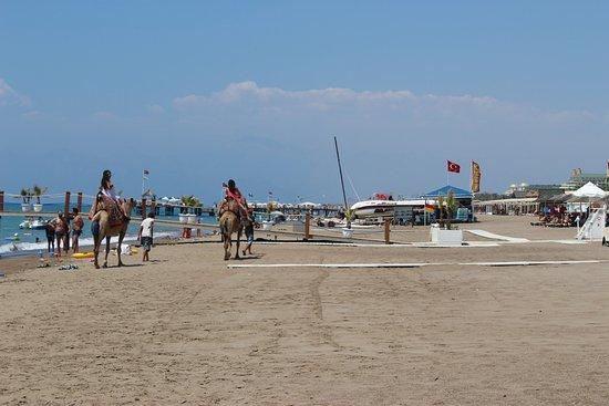 Baia Lara Hotel: Beach front
