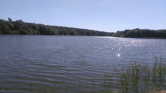 Fosses-la-Ville, Belgia: Le lac, la réserve ornithologique, les jardins thématiques et potagers ... baignade, détente, et
