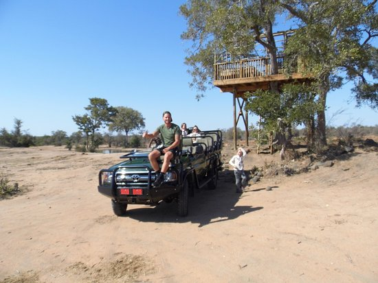 Timbavati Private Nature Reserve, Südafrika: The tree house you must sleep!