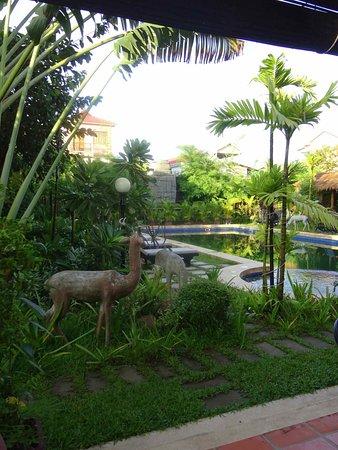 Lotus Lodge: piscine et jardin