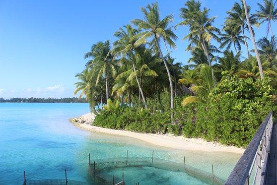 The St. Regis Bora Bora Resort-billede