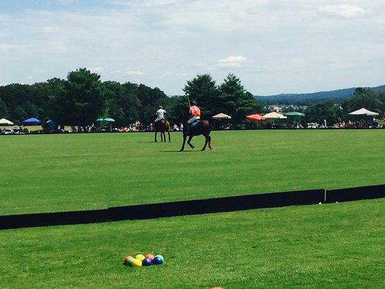 โครเซต, เวอร์จิเนีย: Sunday Polo match