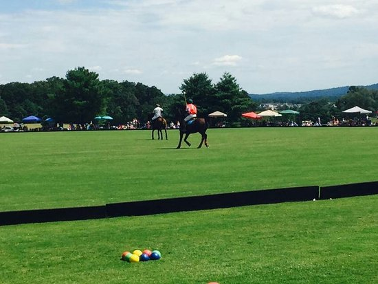 Crozet, Βιρτζίνια: Sunday Polo match
