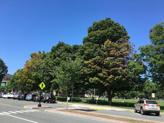 Hanover, NH: photo1.jpg