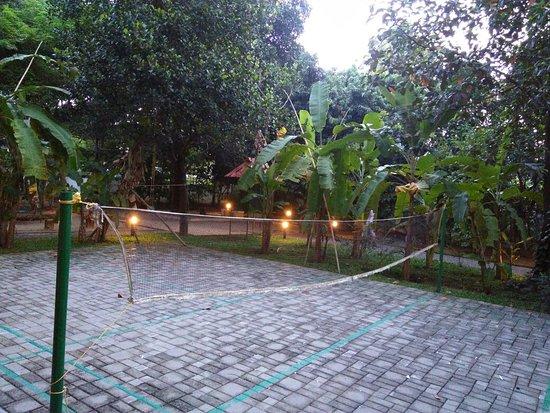 Palm Grove Service Villa : IMG_20160905_183139_large.jpg