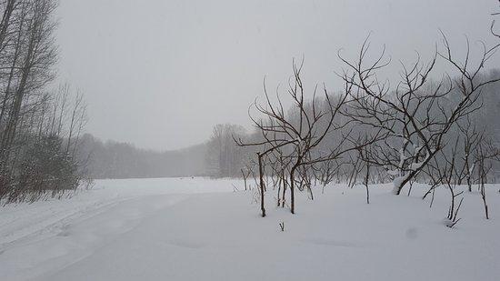 Boyne City, MI: Snow falling while snowshoeing