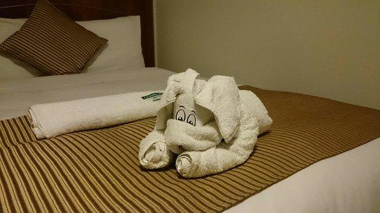 Casona Plaza Hotel AQP: DSC_0019_4_large.jpg