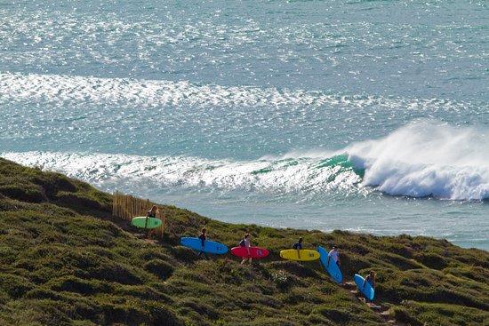Mahi-Mahi Surf School