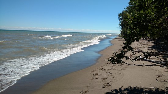 Point Pelee National Park East Beach Located Down Path From Nature Center