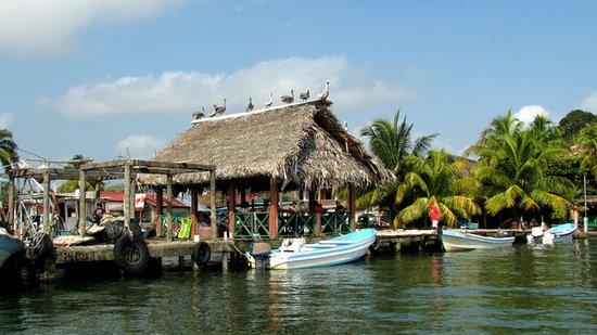 Hotel Villa Caribe: Okolica