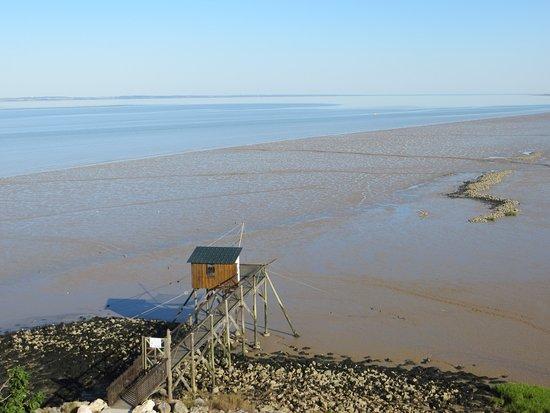 Jau-Dignac-et-Loirac, Франция: vue d'un carrelet à marée basse depuis le phare