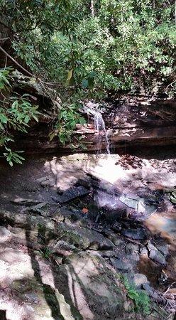 Mullens, Virginia Occidental: Falls