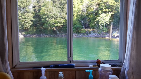 Houseboat Holidays - Private Day Charters : The view from my kitchen window - which changed minute by minute.