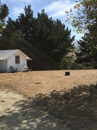 camping.com - Reviews for Santa Cruz North/Costanoa KOA