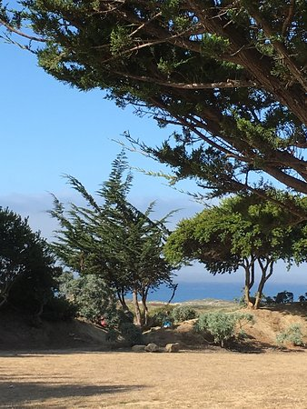 Pescadero, Californie : Clean campground with every type of camping- rv, tent, yurts, lodge, group areas, sauna & clean