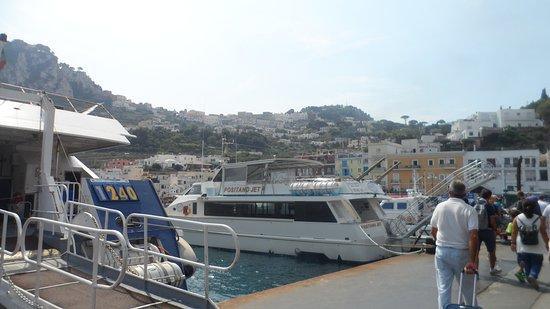 Naples Port Shore Excursion: Harbour