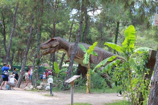 Дино-парк - Photo de Dinopark, Goynuk - TripAdvisor